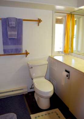 Cape Cod Vacation House Guest Bath